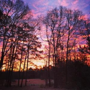 Beautiful sunrise at Campbell Family Farm