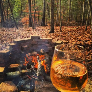 Enjoying some wine by the fire
